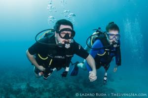 Drift Diving Palm Beach