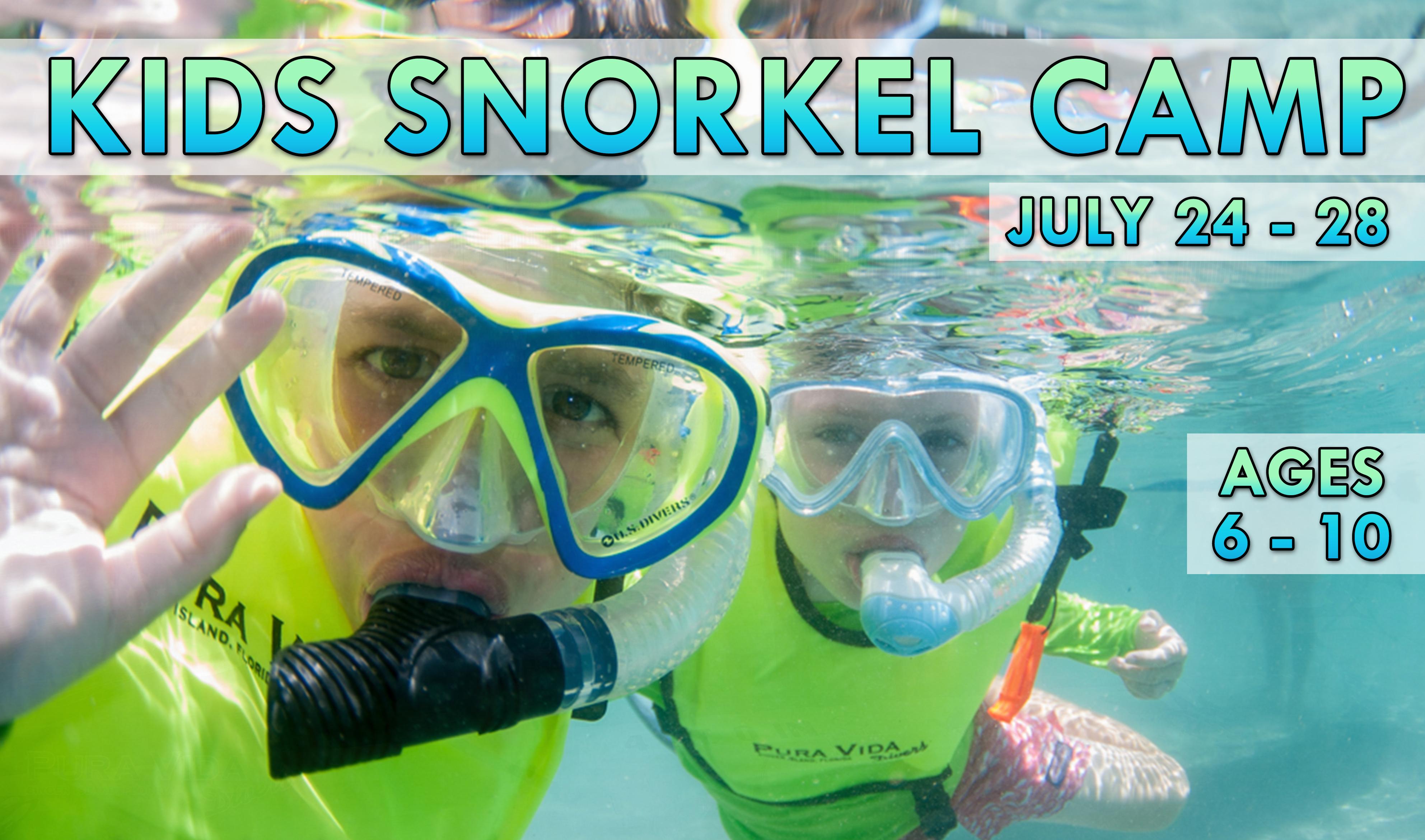 Pura vida divers discover south florida scuba diving summer snorkel camp xflitez Images