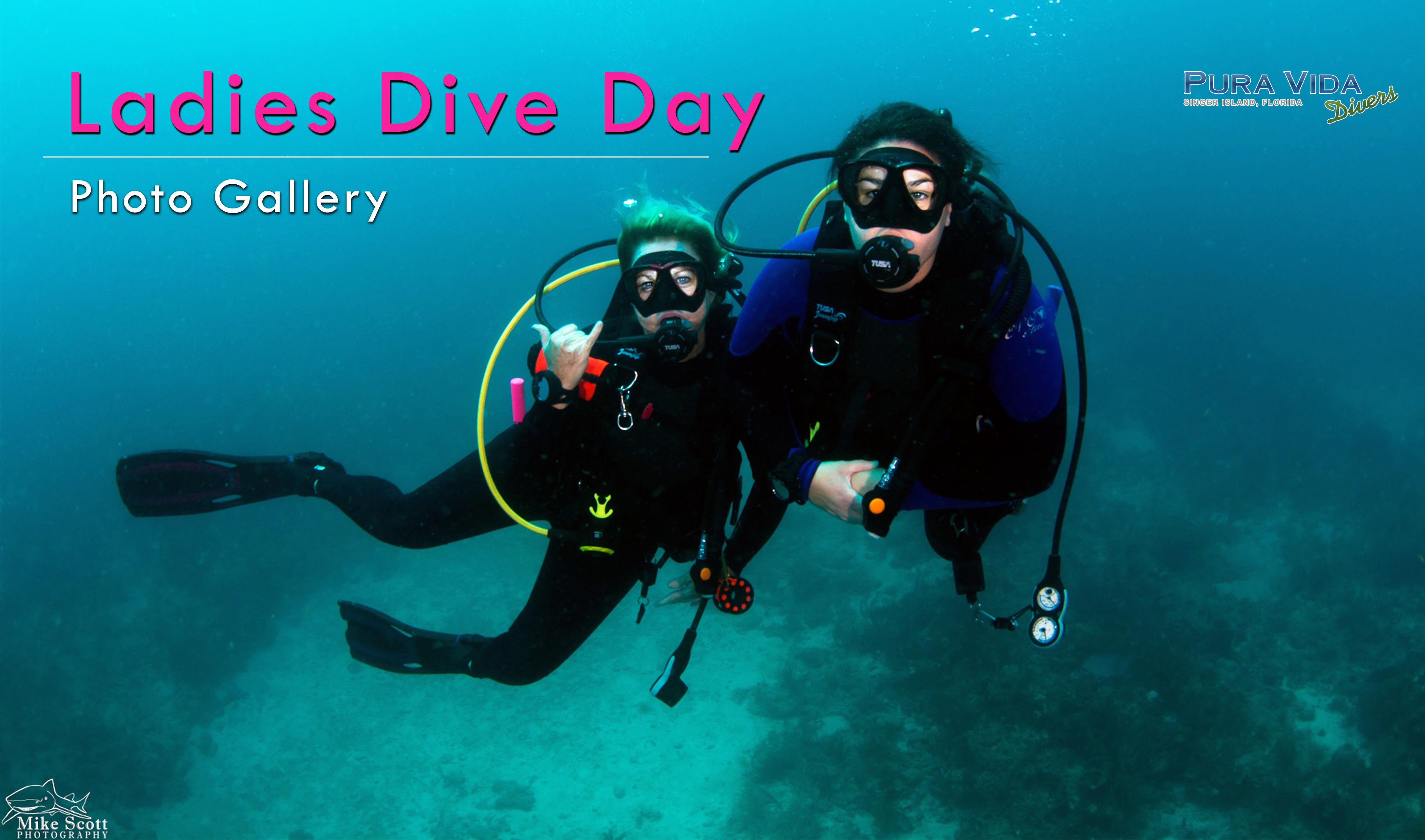 Pura vida divers discover south florida scuba diving ladies dive day photo gallery xflitez Images