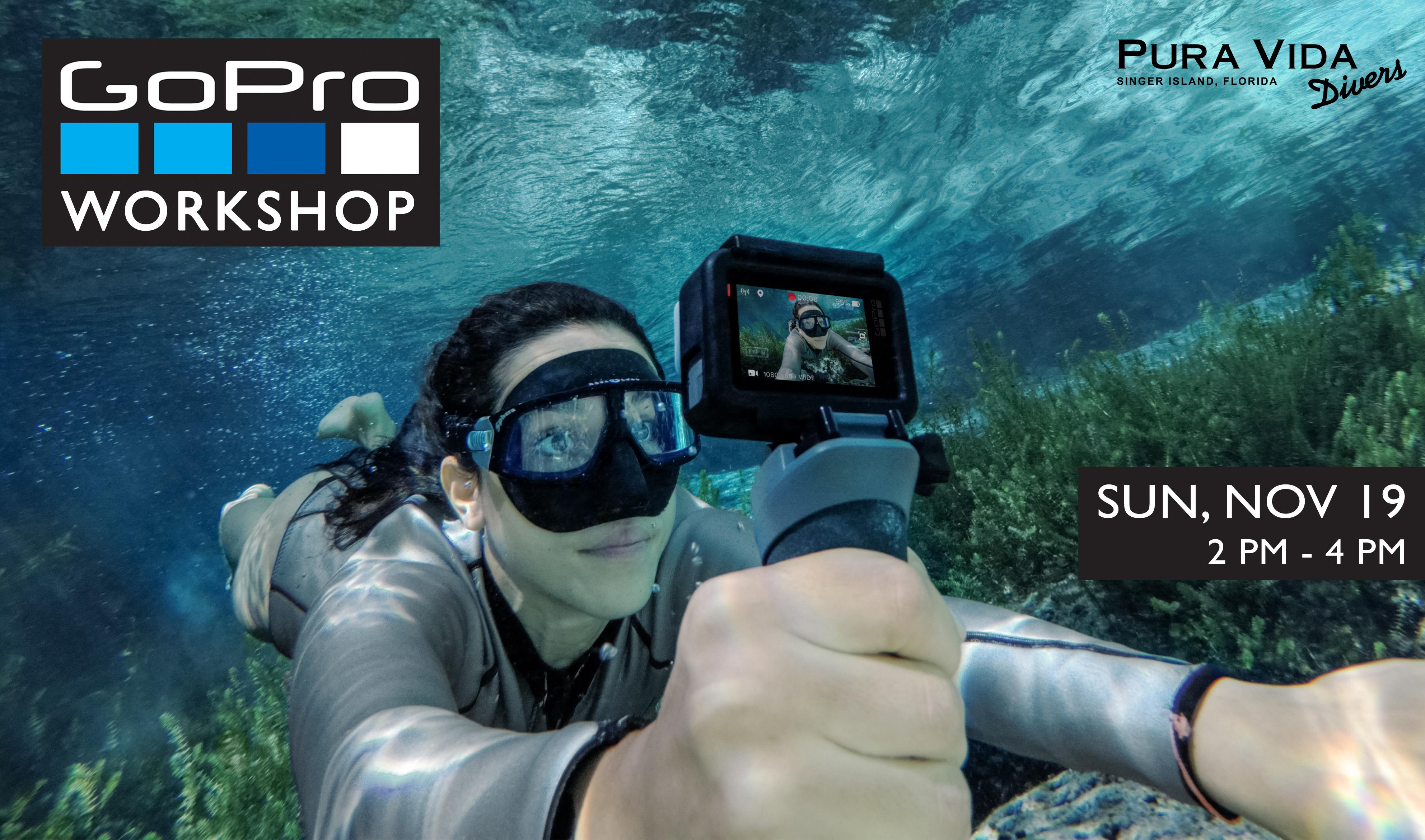 Pura vida divers discover south florida scuba diving nov 19 gopro workshop xflitez Images